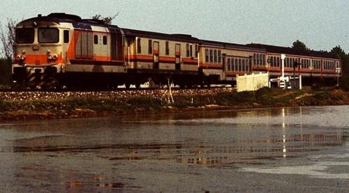 D.445.1109 e convoglio eterogeneo in livrea MDVC nei pressi di Novara nel 1991. Foto © Franco Pepe da littorina.net