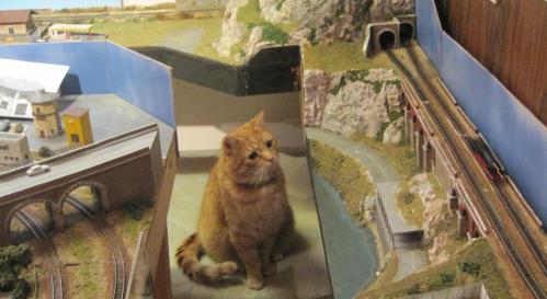 Il gatto e i trenini, da ilbrenneroindanimarca.blogspot.it