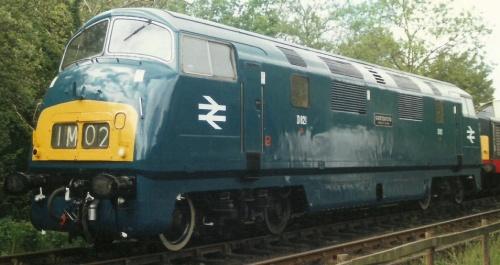 La D821 nei clolori British Railway - Foto © Nigel Gould