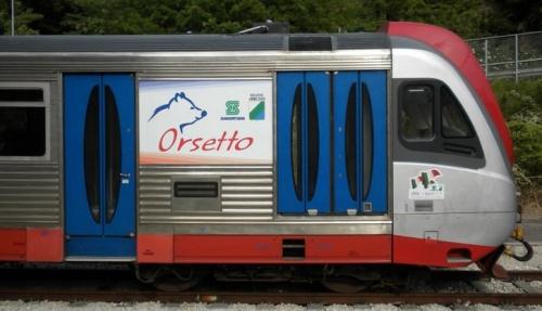 Profilo dell'Orsetto, Foto FV da http://iltrenodellavalle.wordpress.com/2011/05/27/gli-orsetti-mini-galleria-fotografica-della-testa-di-serie/