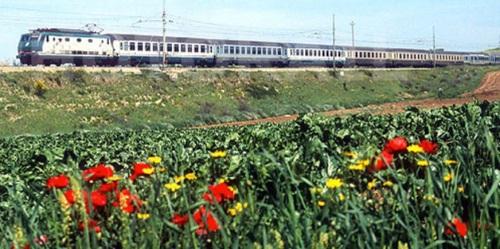 Carrozze abndiera in composizione con vetture bigrigio e XMPR nel 2001 in provincia di Foggia. Dettaglio da una foto © Stefano Paolini da photorail.com