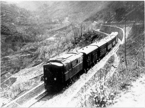 Locomotiva Diesel-Elettrica FIAT delle Ferrovie Calabro Lucane in servizio in testa ad un convoglio (da mediawiki)
