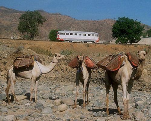 Scenario inequivocabilemnte africano... Foto da http://www.tanago.de/