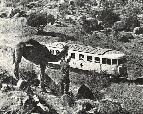 Littorina usta per il trasporto di feriti